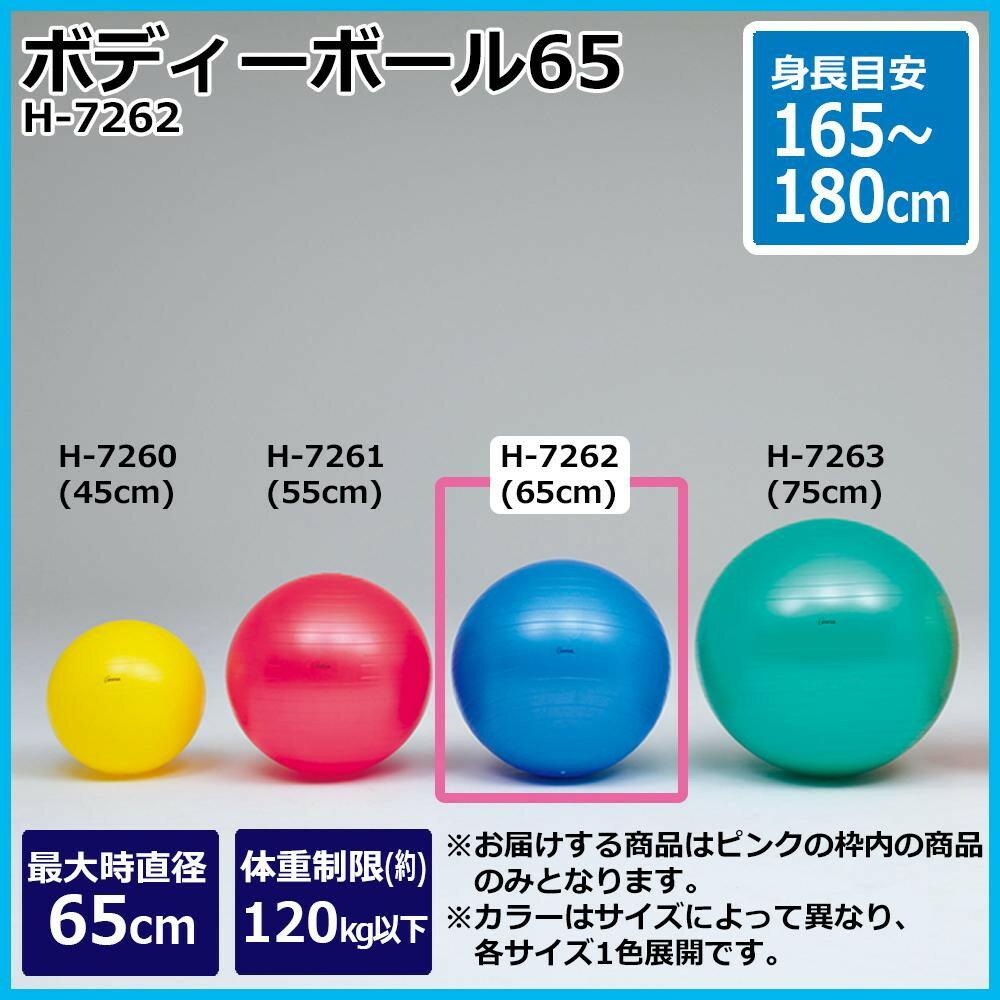 TOEI LIGHT トーエイライト ボディーボール65 H-7262ご注文後3~4営業日後の出荷となります