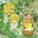 純粋はちみつ アカシア蜂蜜 1.2kg 天然 国産 山形県真室川町産 非加熱 無添加 純度70%以上 送料無料(一部地域を除く)