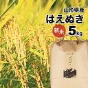 はえぬき 5kg 新米 山形県 令和元年産 精白米