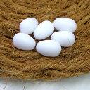 擬卵(ギラン)小鳥用 6個入り/繁殖 産卵 抱卵 偽卵 文鳥 セキセイインコ コバヤシ