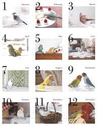 ... かわいい小鳥のカレンダー2014
