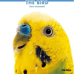 【本州5,400円以上送料無料】THE BIRD 2016年カレンダー/セキセイインコ オカメインコ ラブバー...