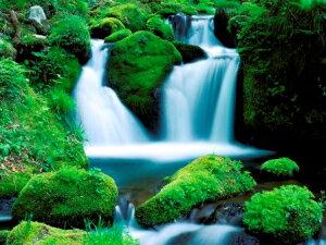 龍泉洞の水(2L×6本)2ケースセット