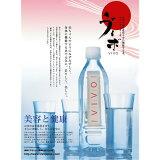 【】ナノクラスター水 VIVO(ヴィボ)(500ml×24本)2ケースセット【smtb-T】