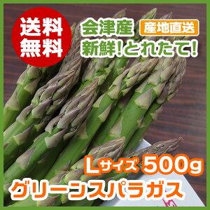 【送料無料】会津産グリーンアスパラガスLサイズ 500g