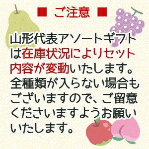 【山形から直送】果汁100%ジュース山形代表6種21本セット