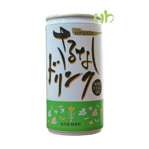 【お試しセット】岩手県軽米町産『さるなし(和製キウイ)』使用!!さるなしドリンク190g×10本セット