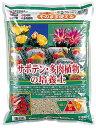 サボテン・多肉植物の培養土 約10L[g6]【2sp_120307_a】