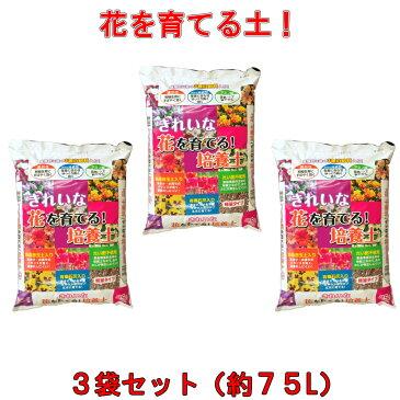 【送料無料】きれいな!花を育てる培養土 25L×3袋セット[g20]【クーポン配布店舗】【ポイント10倍 10月末日まで】