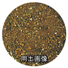 『球根・宿根草の培養土約14L』[g9]