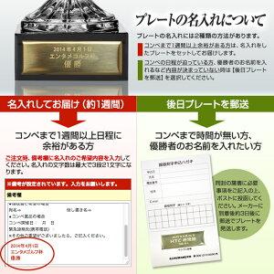 クリスタルトロフィービールジョッキMサイズ(優勝カップ)プレート名入れ無料3