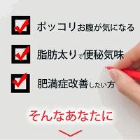 防風通聖散料エキス錠「東亜」384錠