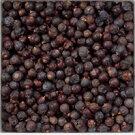 【大特価:100g単位量り売り】ジュニパーベリー(セイヨウネズ・ヨウシュネズ)バルクハーブ・ベリー(実)CommonJuniperberry