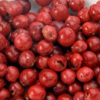 【100g単位量り売り】ピンクペッパー/ピンクペパー(赤胡椒) バルクハーブ・シード・スパイス(種) Pink Pepper