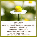 華密恋(カミツレン) 薬用入浴剤 特大 詰替え用 1500ml×3本 (計4.5L) 1本 カミツレ研究所 まとめ買い 3