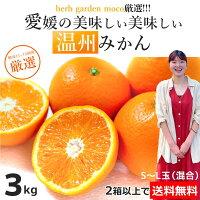 【2箱で送料無料】温州みかん3kg愛媛県産