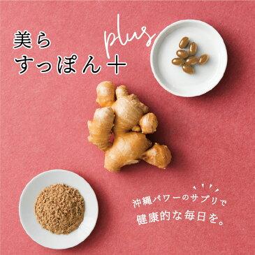 送料無料|美らすっぽんPlus お試し14粒入り|安心の日本製サプリ スッポン やんばる生姜 貧血 代謝アップ 妊活 産後ケア お肌ぷるぷる 活力&代謝アップ アミノ酸 DHA EPA
