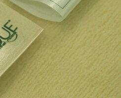 (^_-)-☆【防ダニ・アレルギー】インビスタ社ダブルマイクロマティーク毛布