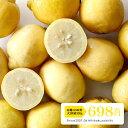 シチリア産レモン 有機JAS取得 無農薬・ノーワックス レモン 【500g】【冷凍のみ】