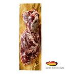 【送料無料】スペイン産 イベリコ豚 カルビ ベジョータ イベリア半島原産種血統75%以上のハイグレードなイベリコ豚をお届け致します!【約450g】【ハイ食材室】【冷凍のみ】