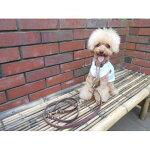 リードとハーフチョークセット中型犬小型犬チョコ1.5cm幅