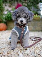 首輪とリードセットサドルレザー小型犬中型犬用チョコ1.5cm幅