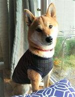 中型犬柴犬ビーグル服オールトラッドカットソー