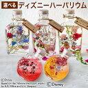7種類から選べるディズニーハーバリウム Healing Bottle 〜Disney collection〜