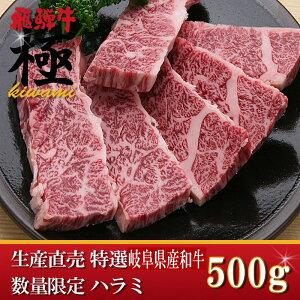 5つ星ホテル直営 産直 岐阜県産和牛の稀少部位、ハラミ 500g 【訳あり】レア10P01Ma…