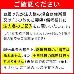 【送料無料】蔵王産業業務用スーパースチームクリーナー2(SSC-2)【レビュープレゼント対象】