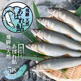 飛騨のあばれ鮎 天然鮎 中サイズ 5匹 天然 アユ 鮎 岐阜  飛騨 観光地応援