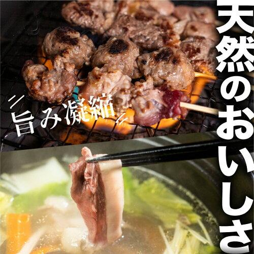 飛騨の山の宝鹿ワイン煮カレー180g鹿肉ジビエ猟師肉シカ鹿シカ肉カレー飛騨狩人工房