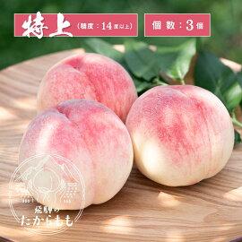 飛騨のたから桃桃特選糖度12度以上6−8玉朝採れ白桃