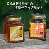 送料無料はちみつ王国日本のはちみつ金3種のナッツセット岐阜県産