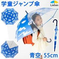 雨の日が待ち遠しくなる、一面に青空が広がる子供用の雨傘です。