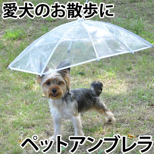 雨が嫌いなワンちゃんのために!ペットアンブレラ 【小型犬用の傘・散歩用雨具】