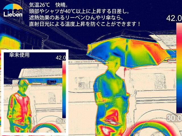 【UPF50+ UVカット率99%以上 遮光率99%以上 遮熱効果 炎天下で差が出る日傘】UVミニ傘 50cm×6本骨 【LIEBEN-0574】 シルバー 晴雨兼用 <ひんやり傘> 折りたたみ日傘 hmini