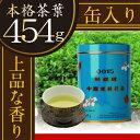 胡蝶青缶(大)0015