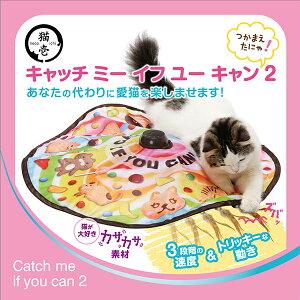 【SALE】キャッチミーイフユーキャン2