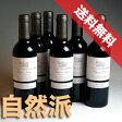 【送料無料】パスカル・キュセイシャトー・デ・ゼサール ルージュ ハーフボトル 6本セットdes Eyssards Rouge 1/2フランスワイン/赤ワイン/ミディアムボディ/ハーフワイン/375ml×6 【自然派ワイン ビオワイン 有機ワイン オーガニックワイン】