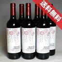 【送料無料】レアル レアレス・ビニェードス カベルネ・ソーヴィニヨン 6本セットReal Vinedos Cabernet Sauvignon スペインワイン/カスティーリャ/赤ワイン/ミディアムボディ/750ml×6