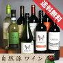 ■送料無料■自然派赤白ワイン・ベーシック飲み比べ8本セット送料込みエコセール認証ワイン・有機栽培ワインも入っています!【赤ワインセット】【自然派ワインビオワイン有機ワインbioオーガニックワインセット】【楽天通販販売】