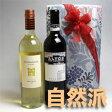 ちょっとした贈りものに!体に優しい自然派 アルゼンチンワイン・赤白2本組ギフトセット  【2本セット】【自然派ワイン ビオワイン 有機ワイン bio オーガニックワインセット】