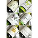 自然派ワイン【辛口白ワインセット】 ■送料無料■ シャルドネ有機認証(エコセール、AB、デメテール等)バラエティ飲み比べ6本セットVer.7 【ビオワイン 有機ワイン 有機栽培ワイン bio オーガニックワインセット】
