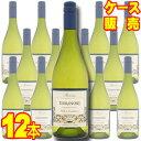 【送料無料】 テラノブレ シャルドネ レセルバ  12本セット・ケース販売 Terra Noble Chardonnay Reserva チリ/チリワイン/白ワイン/辛口/750ml×12【ケース売り】