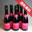【送料無料】サンテロ ピノ・ロゼ スプマンテ ハーフボトル 6本セット Santero Pinot Rose Spumante 1/2イタリアワイン/ピエモンテ/スパークリングワイン/やや辛口/ハーフワイン/375ml×6 【イタリアワイン】【泡 発泡】