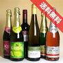 ■送料無料■飲めない人を応援♪ノンアルコールワイン4本+スパークリング・ジュース2本のセット