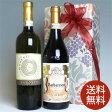 高級イタリアワイン 赤白ワインセットモンテプルチアーノ & ガヴィ 2本組飲み比べギフトセット【2本セット】 [ギフト・ラッピング・のし・メッセージカード OK!]お祝い/結婚祝い/誕生祝い/結婚記念日/贈り物/誕生日プレゼント/開店祝い
