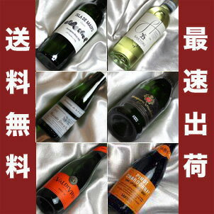 ■送料無料■お手軽に! さわやかな白ワインとスーパークリングワイン ハーフボトル飲み比べ6本セットVer.4【ギフト ワイン お酒】【375ml×6】【ハーフワインセット】【白ワインセット】【ハーフサイズ】【楽天 通販 販売】