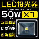 300300nledwly50w1t